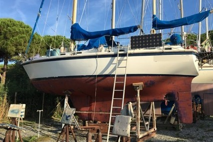 Westerly Marine WESTERLY 36 CONWAY for sale in Italy for €35,000 (£31,005)