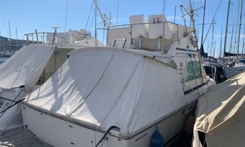 Image of Bertram 32 CARIBBEAN for sale in Italy for €72,000 (£60,378) Toscana, Toscana, Italy