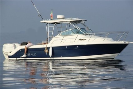 Robalo 245 R for sale in Italy for €48,000 (£43,832)