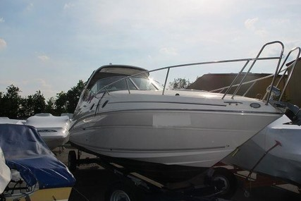 Sea Ray 305 Sundancer for sale in Germany for €99,900 (£88,685)
