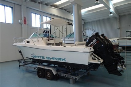 Kelt WHITE SHARK 236 for sale in Italy for €26,000 (£23,301)