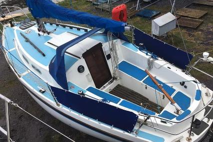 Colvic 26 sailor for sale in United Kingdom for £5,950