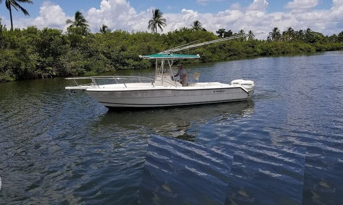 Image of Pursuit 2470 for sale in United States of America for $29,950 (£23,178) Jupiter, Florida, United States of America
