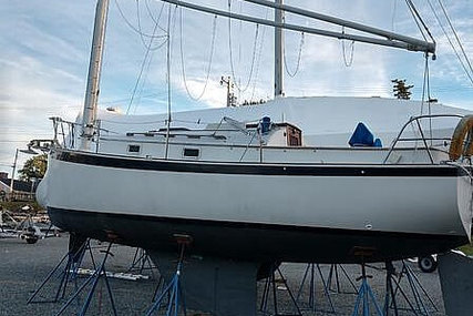Nonsuch Classic 26 for sale in United States of America for $17,500 (£13,417)