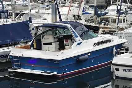 Sea Ray 340 Sport Fish for sale in United Kingdom for £32,950