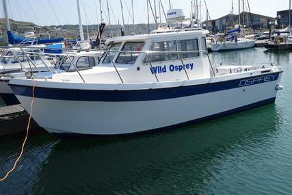 Osprey Pilothouse 22 Euro Angler for sale in United Kingdom for £19,950