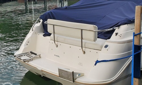 Image of Wellcraft 260 SE for sale in United States of America for $21,250 (£15,296) Saint Clair Shores, Michigan, United States of America