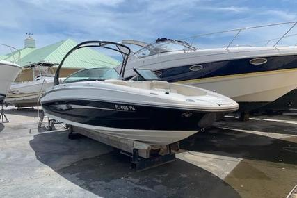 Sea Ray 240 Sundeck for sale in United States of America for $53,900 (£42,908)