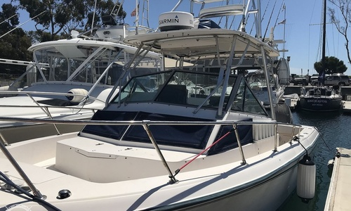 Image of Grady-White Trophy Pro 25 for sale in United States of America for $60,000 (£48,497) Dana Point, California, United States of America