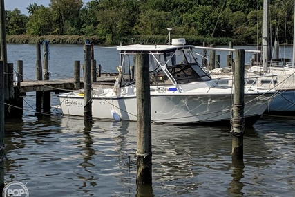 Carolina Classic 25 for sale in United States of America for $29,000 (£23,476)