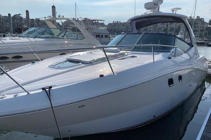 Sea Ray 310 Sundancer for sale in United States of America for $82,500 (£66,409)