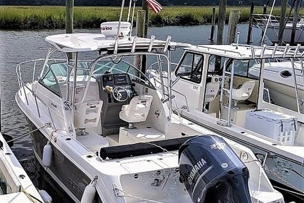 Robalo R245 Walkaround for sale in United States of America for $62,750 (£49,953)