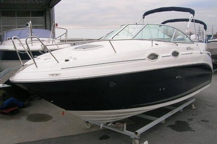 Sea Ray 255 DAE for sale in Germany for €66,900 (£57,567)