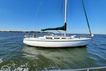 Catalina 36 for sale in United States of America for $25,900 (£20,235)