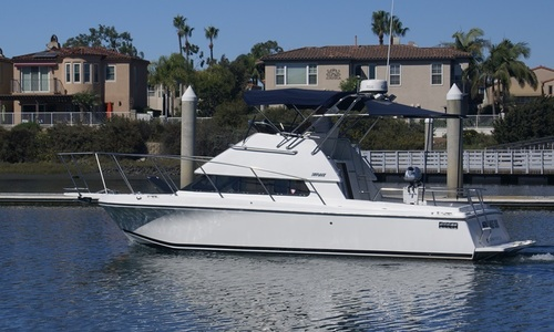 Image of Skipjack Flybridge Flybridge 262 for sale in United States of America for $129,900 (£94,356) United States of America