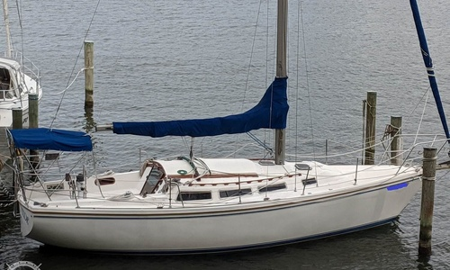 Image of Catalina 30 Tall Rig for sale in United States of America for $14,500 (£10,577) Annapolis, Maryland, United States of America