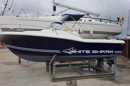 White Shark 206 Cabin for sale in United Kingdom for £18,500
