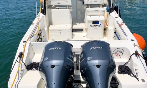 Image of Wellcraft 270 Coastal for sale in  for €65,000 (£54,508) Grosseto,