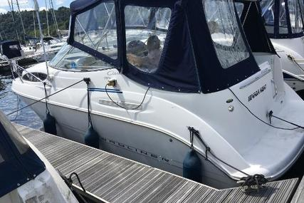 Bayliner Ciera 2655 Sunbridge for sale in United Kingdom for £24,995