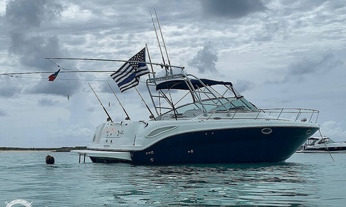 Image of Sea Ray 290 Amberjack for sale in United States of America for $72,300 (£55,330) Delray Beach, Florida, United States of America