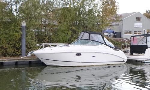Image of Sea Ray 260 Sundancer for sale in United Kingdom for £39,950 Chertsey, United Kingdom