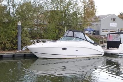 Sea Ray 260 Sundancer for sale in United Kingdom for £39,950
