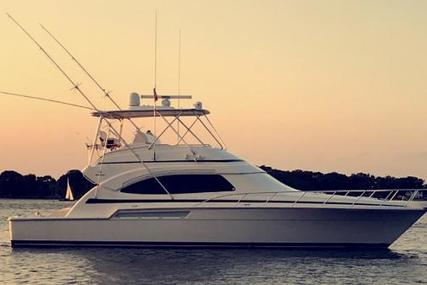 Bertram 510 Convertible for sale in United States of America for $699,000 (£544,617)