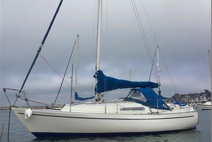 Sadler 25 for sale in United Kingdom for £6,900