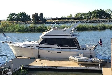 Bayliner EXPLORER 3270 - Double Cabin Flybridge Motor Yacht for sale in United States of America for $26,500 (£20,112)