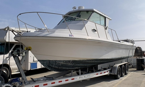 Image of Sportcraft Fishmaster 302 Sport for sale in United States of America for $38,900 (£31,160) Long Beach, California, United States of America