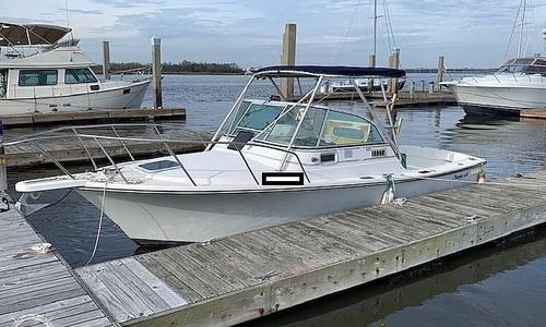 Image of Shamrock 22 Predator for sale in United States of America for $11,000 (£8,561) Charleston, South Carolina, United States of America