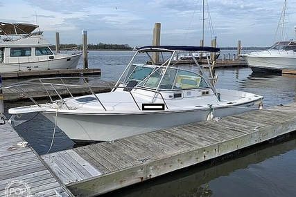 Shamrock 22 Predator for sale in United States of America for $12,000 (£9,200)