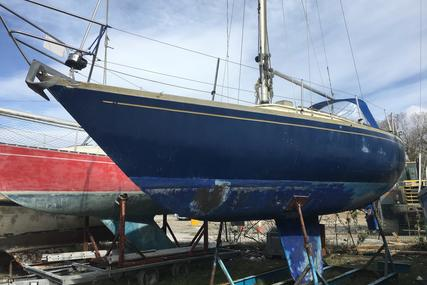 Carter 33 for sale in United Kingdom for £6,950