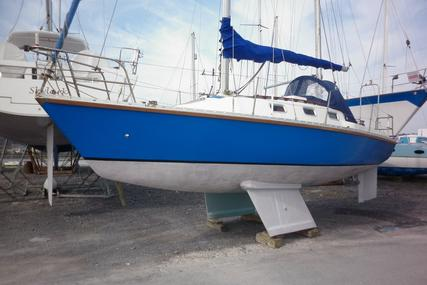 Pacesetter 28 for sale in United Kingdom for £7,800