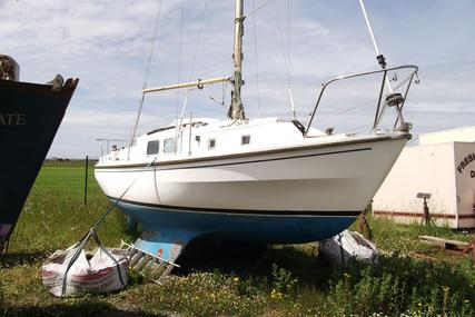 Westerly Centaur for sale in United Kingdom for £5,950