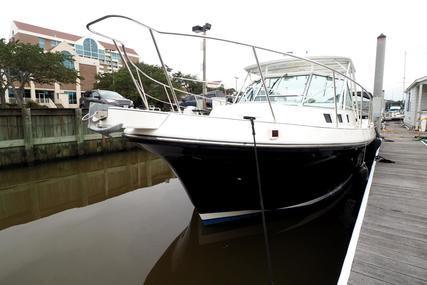 Albin 31 Tournament Express for sale in United States of America for $115,000 (£88,769)