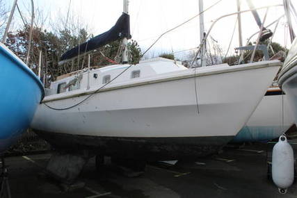 Westerly 26 Centaur for sale in United Kingdom for £4,995