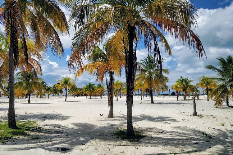 Cayo Largo in Cuba